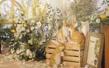 【梦工场作品】big day--童趣婚礼
