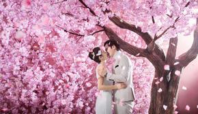 【花海城堡】花系 文艺青年喜爱的浪漫风格
