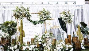 唯美森系户外简约婚礼,含四大金刚15999