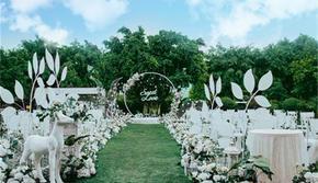 《银装》草坪婚礼(明星同款)