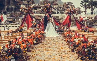 【热带猫婚礼】沙滩婚礼 复古枫叶