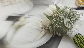 【美人鱼婚礼】白绿·简约·轻奢之选