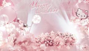 【精选套餐】粉色浪漫主题 含资深四大及花车布置
