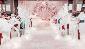 【时光印迹】【时光印迹】蝶变/粉色童话婚礼