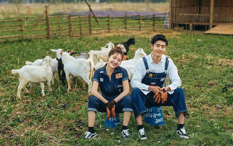 【西西里牧场】和小羊一起合影婚纱照8服8造套餐