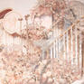 人气爆款 |网红ins风|粉色花海