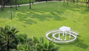 【香格里拉】草坪婚礼限定套系