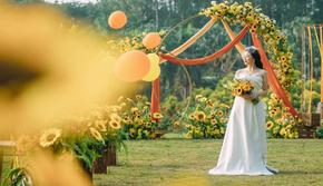 【瑾·婚礼】向日葵婚礼-向往