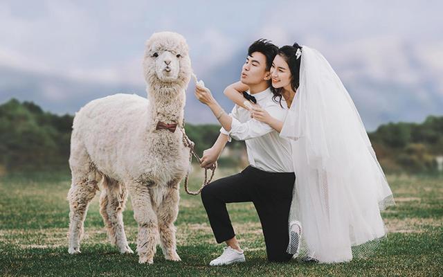 ROSE客片【wang先生&liu女士】萌宠出境