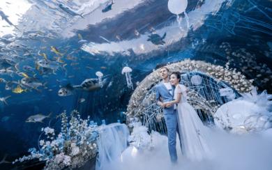 梦幻海洋婚礼   掉进蔚蓝的海底世界