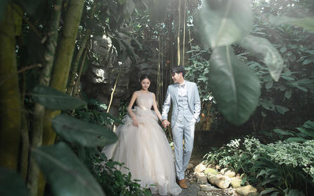 氧气森林婚纱照