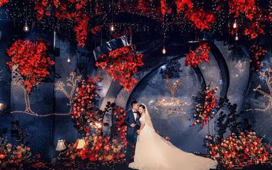 会开花的树——五厘米婚礼