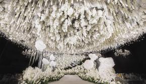 暮光之城主题婚礼《年华》| 泰迪婚礼
