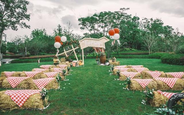 清新又卡通类型的草坪婚礼