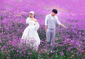 【夏季福利】10000元豪礼免费送,享8大外景