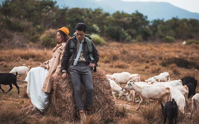 【草原拍摄】| 璐鸣山庄+牧野大草原羊群拍摄
