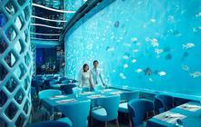【克洛伊全球旅拍】三亚站 海底餐厅特惠套系