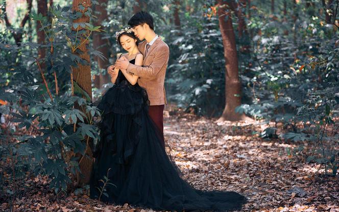【迷雾森林黑纱系列+拍多少送多少+先拍照后付款】
