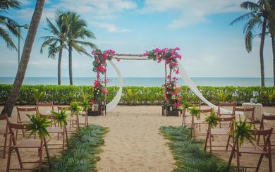户外海边婚礼《菠菜君的婚礼有个菠萝花》