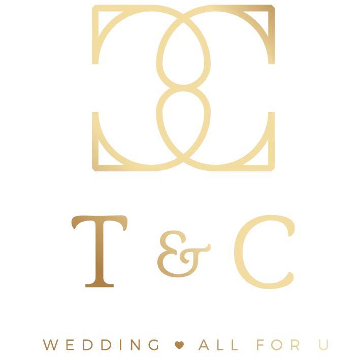 TC wedding婷晨婚纱