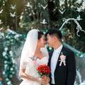 准确把握时间,谨慎规划流程,合理安排任务,让自己婚礼顺利完成✅