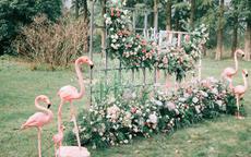 婚礼风格类型有哪些