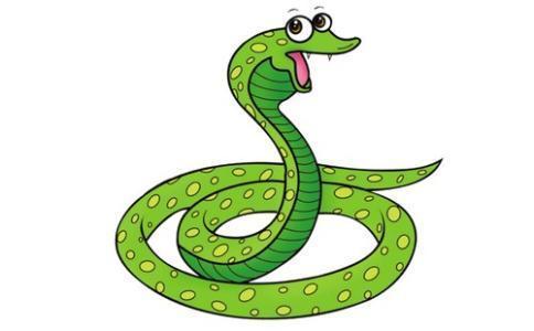 屬蛇的和什麼屬相最配【婚禮紀】