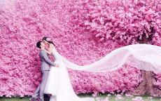 妹妹结婚了祝福语