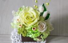 绿玫瑰花语是什么 适合结婚用吗