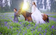 广州照婚纱照多少钱