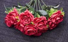 求婚用九朵玫瑰花代表什么意思