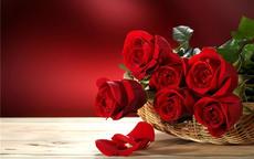 求婚送35朵玫瑰代表什么意思