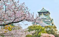 樱花季日本婚纱摄影攻略