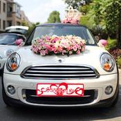 婚车装饰无纺布婚车车贴