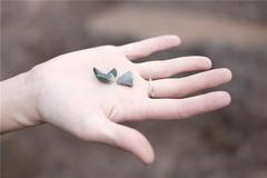女人食指戴戒指什么意思