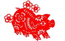 猪本命年可以结婚吗?有什么忌讳?