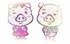 两个同年猪能结婚好吗