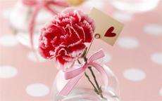 父母结婚三十年送什么花