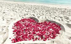 海边求婚策划方案 最浪漫的海边求婚创意点子