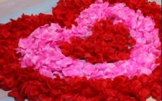 婚房布置装饰品大合集,解析婚房装饰必备用品