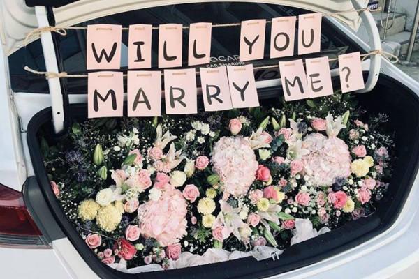 后备箱求婚