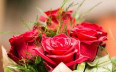 怎么求婚温馨浪漫 求婚的3个注意事项