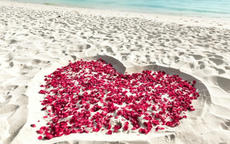 简单又浪漫的求婚策划方案有哪些