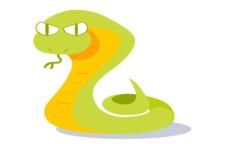 属蛇的和什么属相最配 属蛇最佳婚配属相