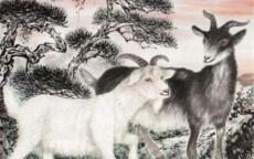 生肖羊和什么生肖结婚最配 男女属羊的最佳属相婚配表