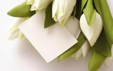 男生送花给女朋友卡片怎么写