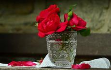 男朋友送的玫瑰花怎么保存