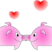 属猪和属猪的婚姻怎么样