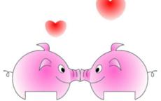 男猪女猪配婚姻好不好 属猪女和属猪男的婚姻怎么样
