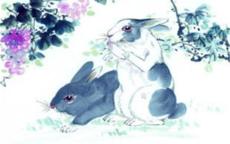 属龙和属兔的婚姻相配吗 在一起合不合适